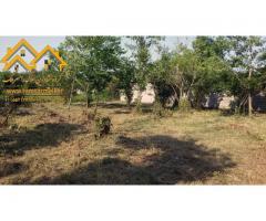 فروش ویژه زمین رامسر 425 متری مسکونی با سند ششدانگ (کد: 2008)