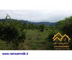 فروش زمین در رامسر سادات شهر به متراژ 425 متر با سند ششدانگ مسکونی (کد: 2012)